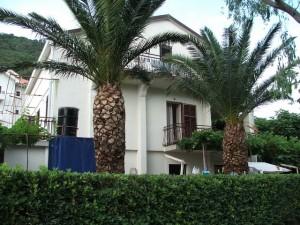 Baka Zlata - Sobe i apartmani - Petrovac na moru - Crna Gora - Dvorište sa palmama